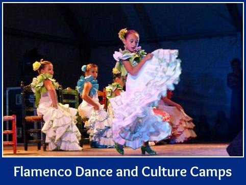 flamenco-camp-graphic