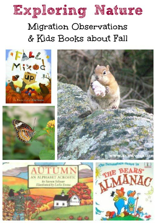 Fun Fall Activities - Explore Migration