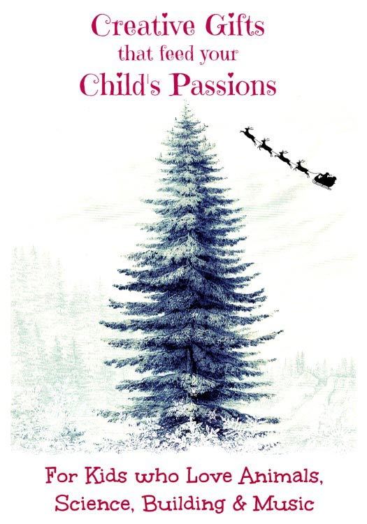 Gift Ideas for Your Child's Passions