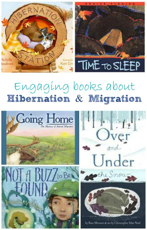 Wonderful Books about Hibernation and Migration