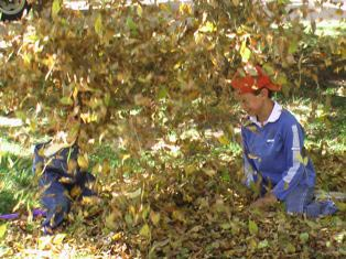 kids-in-leaves-small