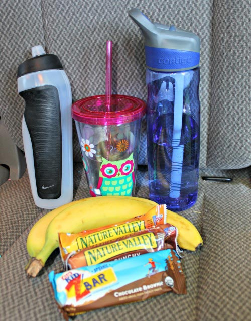 Snack ideas for Car Trips - what to bring on a day trip with kids