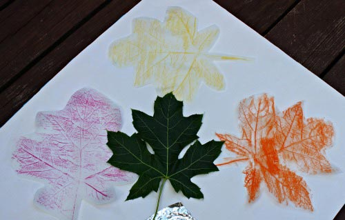 Leaf rubbings using different Art materials for kids