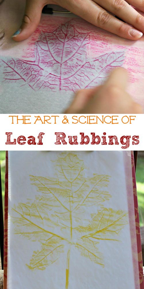 Leaf Rubbing with wax paper, crayons, foil, pencils and more - lesson plan for STEAM activity