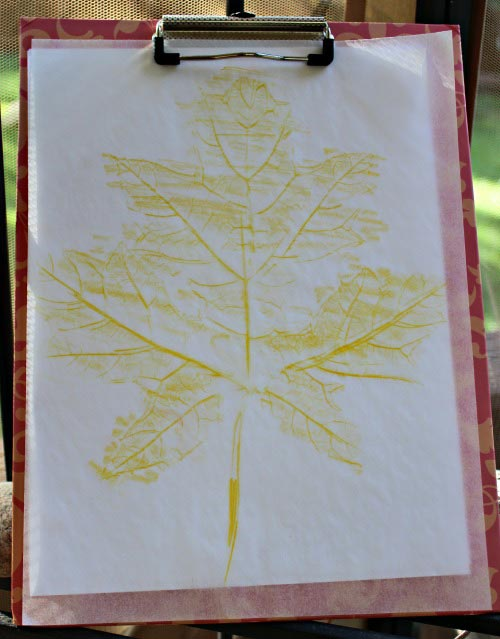 Leaf rubbing with colored pencil on tracing paper | Edventures with Kids