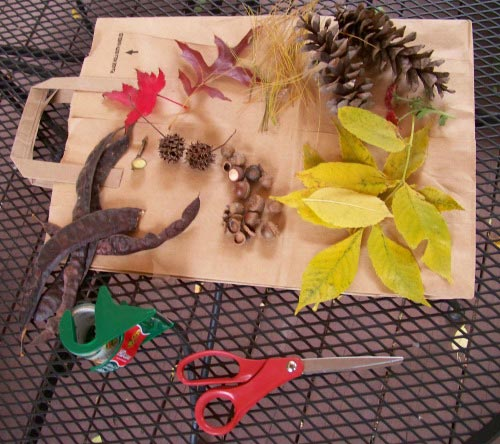 Quick and easy supplies for a Nature Crown