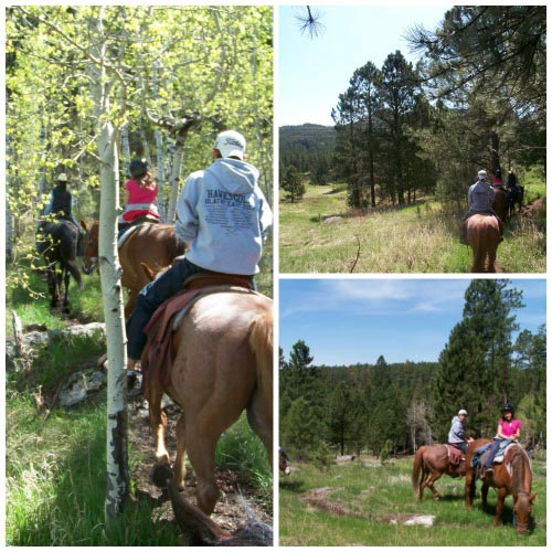 Trail Rides in the Black Hills
