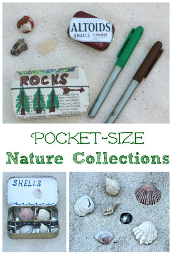 nature collections for kids