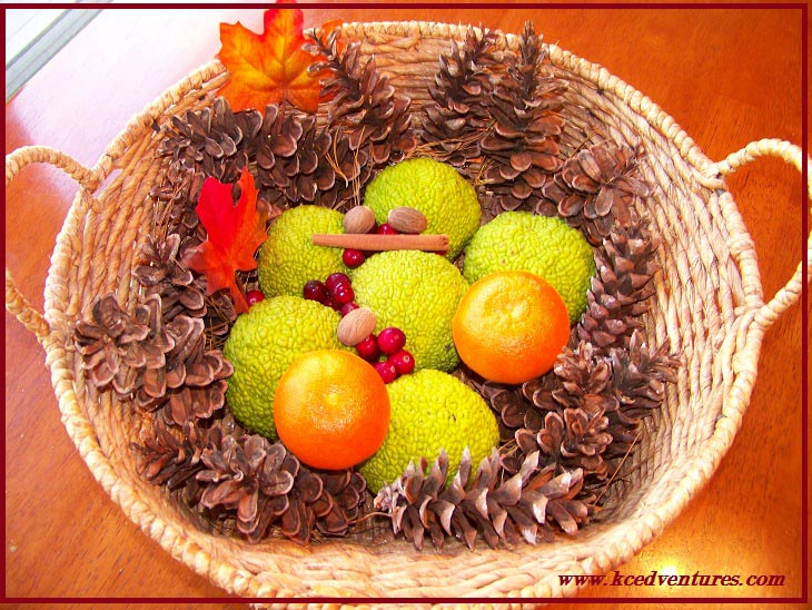 Nature Basket for the Thanksgiving Table