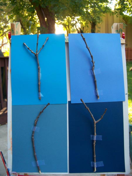 Painting the Four Seasons of a Tree