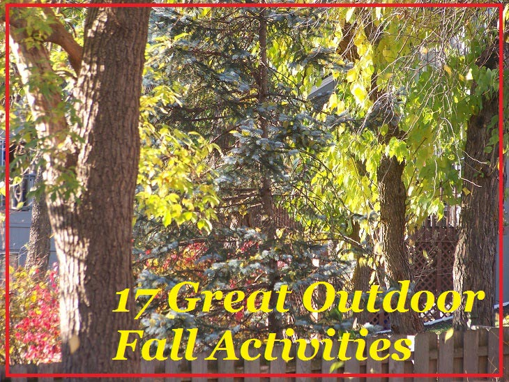 17 Fun Fall Activities