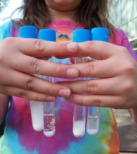 Ideas for outdoor science projects to do with kids